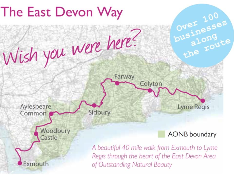 East Devon Walk Map1